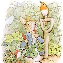 Peter-Rabbit_5